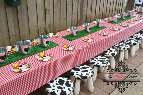 Farm themed kids birthday party hire Ballarat